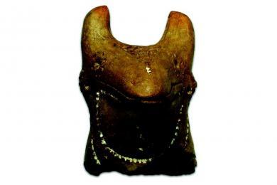 Plastika koníka zo staršej doby bronzovej