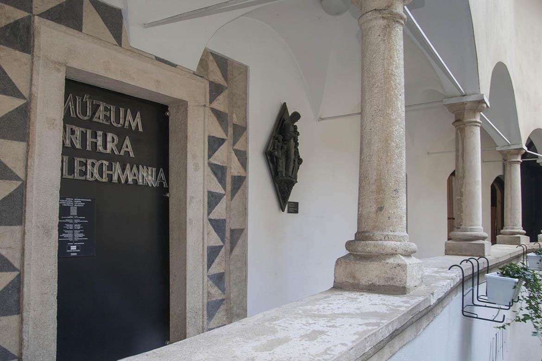 Múzeum Arthura Fleischmanna